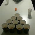 Post Thumbnail of Beer Pong - Bierpong