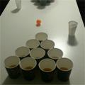 Post thumbnail of Beer Pong – Bierpong